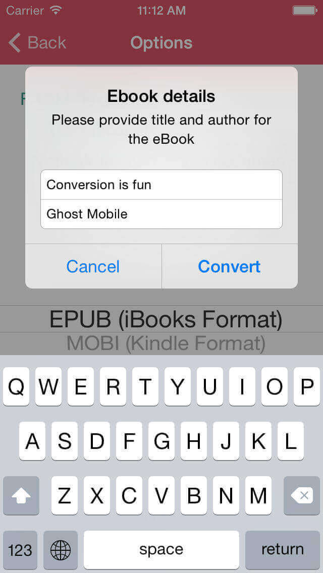 best PDF to EPUB converter for iPhone